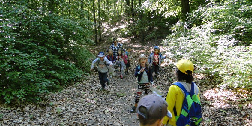 Wycieczka do lasu kl. 0a