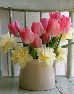 Datek zamiast kwiatka – zbiórka pieniędzy dla gdyńskiego Hospicjum.