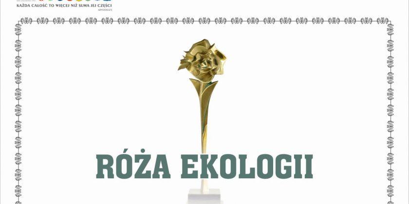 Róża Ekologii 2018 dla SP 26 i Gimnazjum nr 2