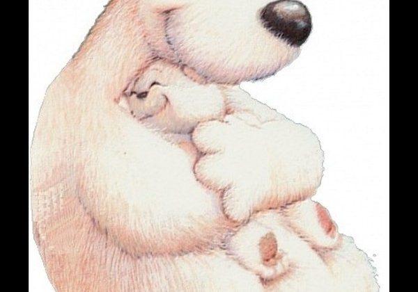 Międzynarodowy Dzień Przytulania :) i konkurs na imię dla maskotki czytelni